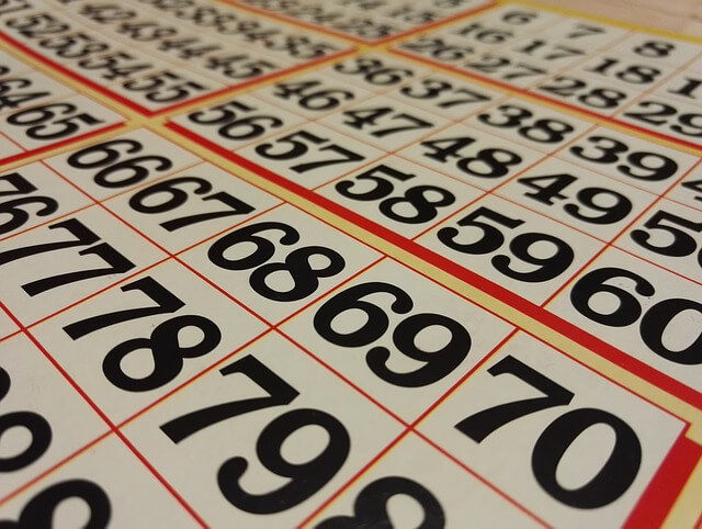 Bingo Guide Feature